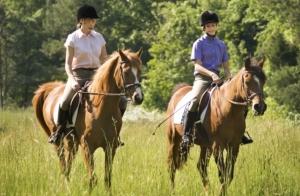 1 o 2 noches alojamiento con paseo a caballo