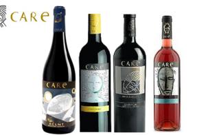Cata de vinos Bodegas Care. Granada Gourmet 2018