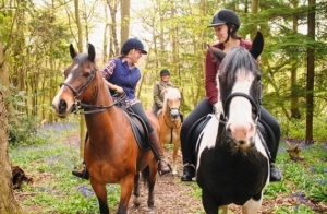 Curso de equitación durante 1 mes