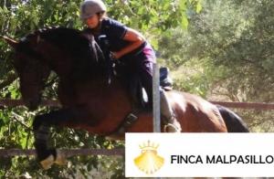 3 clases de equitación en Finca Malpasillo