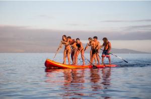 Alquiler tabla paddle surf XXL 1 hora por sólo 29,95€
